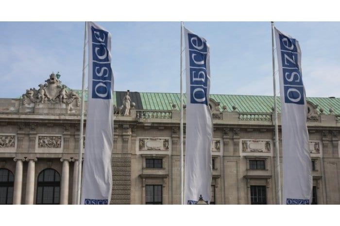 După aproape 8 luni de acţiuni abuzive din partea Tiraspolului, Chișinăul a mers la Viena să discute direct cu OSCE