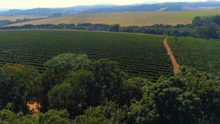 Coridor verde pentru fermierii care au terenuri agricole după traseul Râbnița-Tiraspol